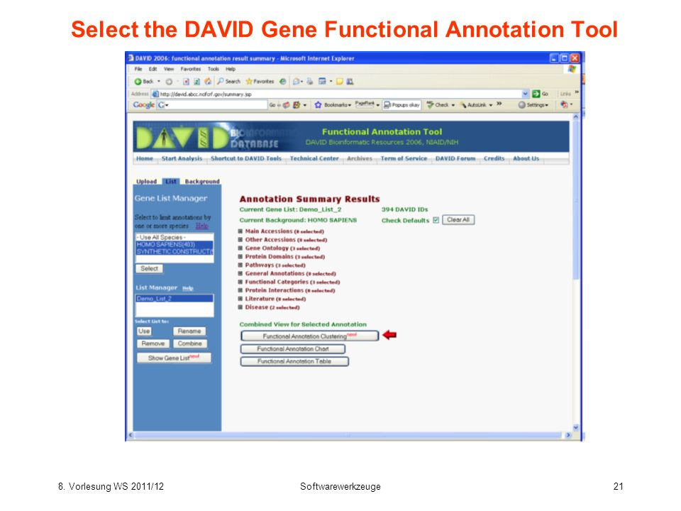Select the DAVID Gene Functional Annotation Tool