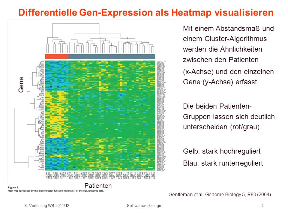 Differentielle Gen-Expression als Heatmap visualisieren
