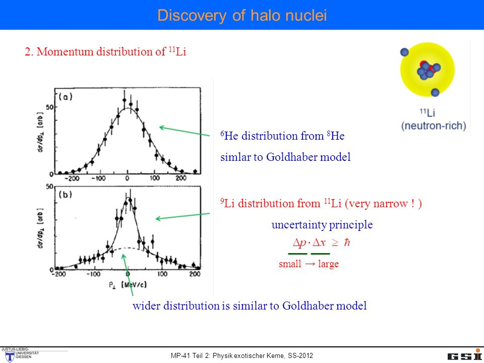 Discovery of halo nuclei