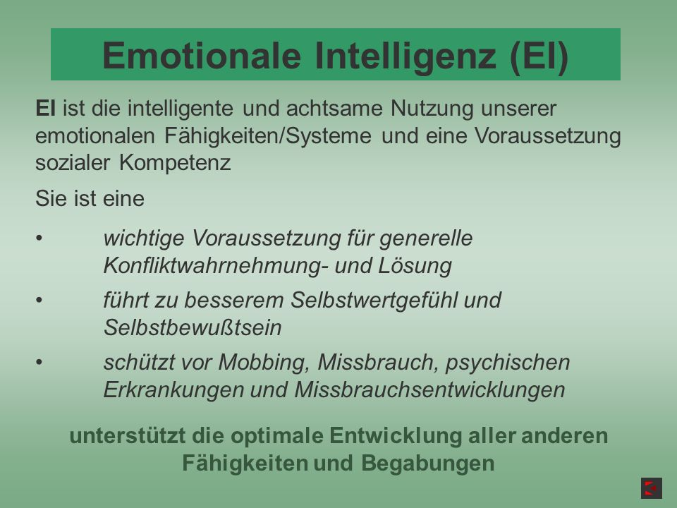 Emotionale Intelligenz (EI)