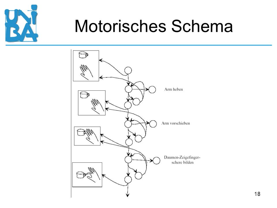Motorisches Schema