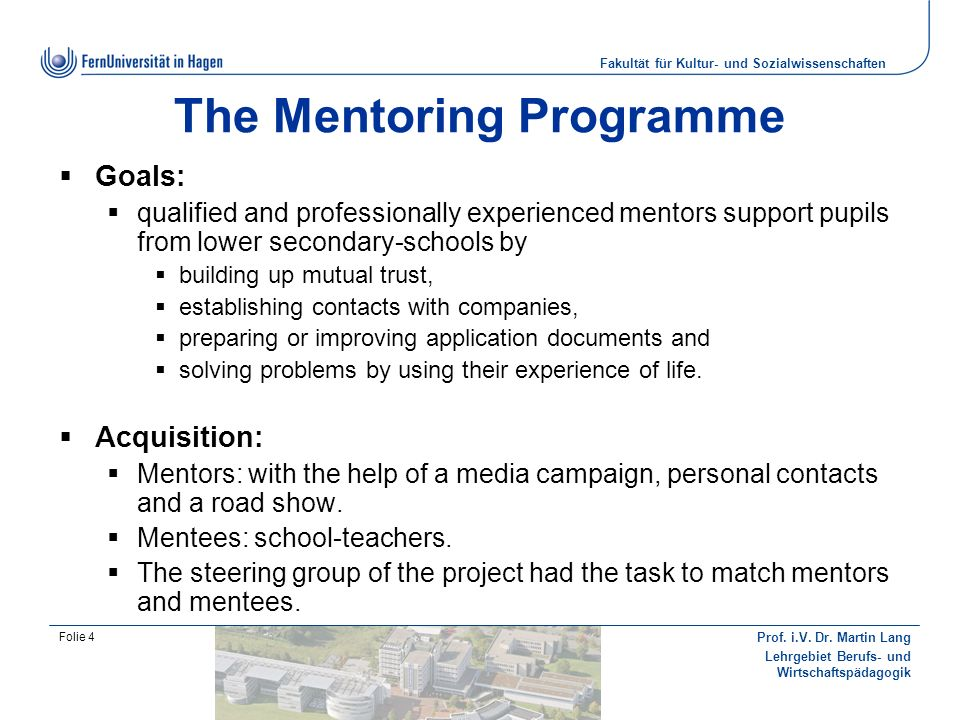 The Mentoring Programme