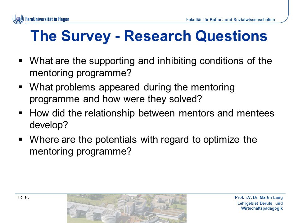 The Survey - Research Questions