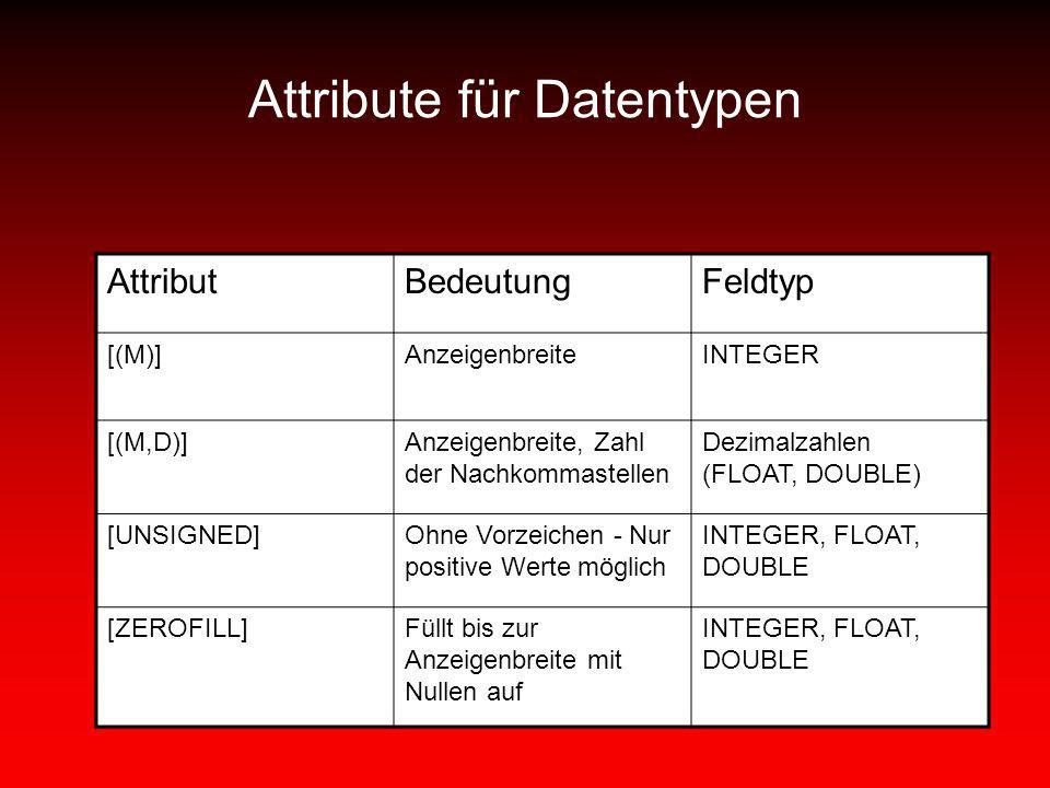 Attribute für Datentypen