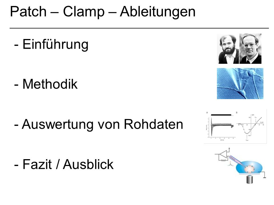 Patch – Clamp – Ableitungen _____________________________________________________________