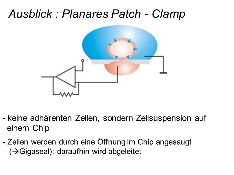 Ausblick : Planares Patch - Clamp