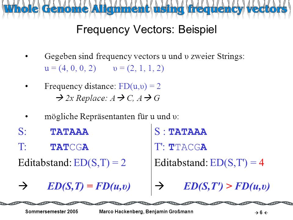 Frequency Vectors: Beispiel
