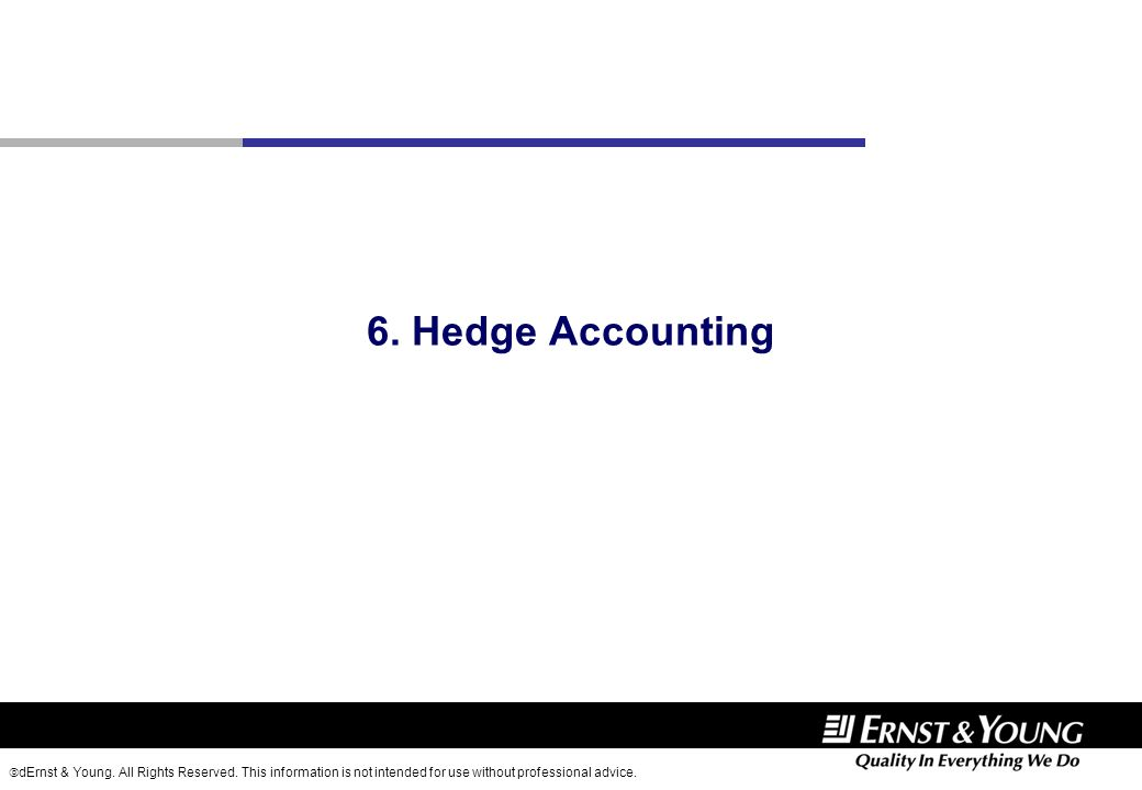 6. Hedge Accounting