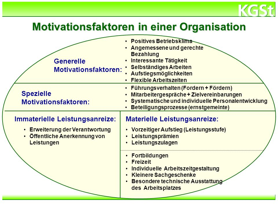 Motivationsfaktoren in einer Organisation