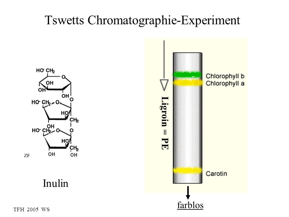 Tswetts Chromatographie-Experiment