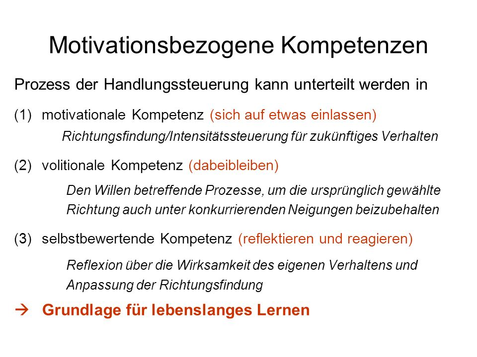 Motivationsbezogene Kompetenzen