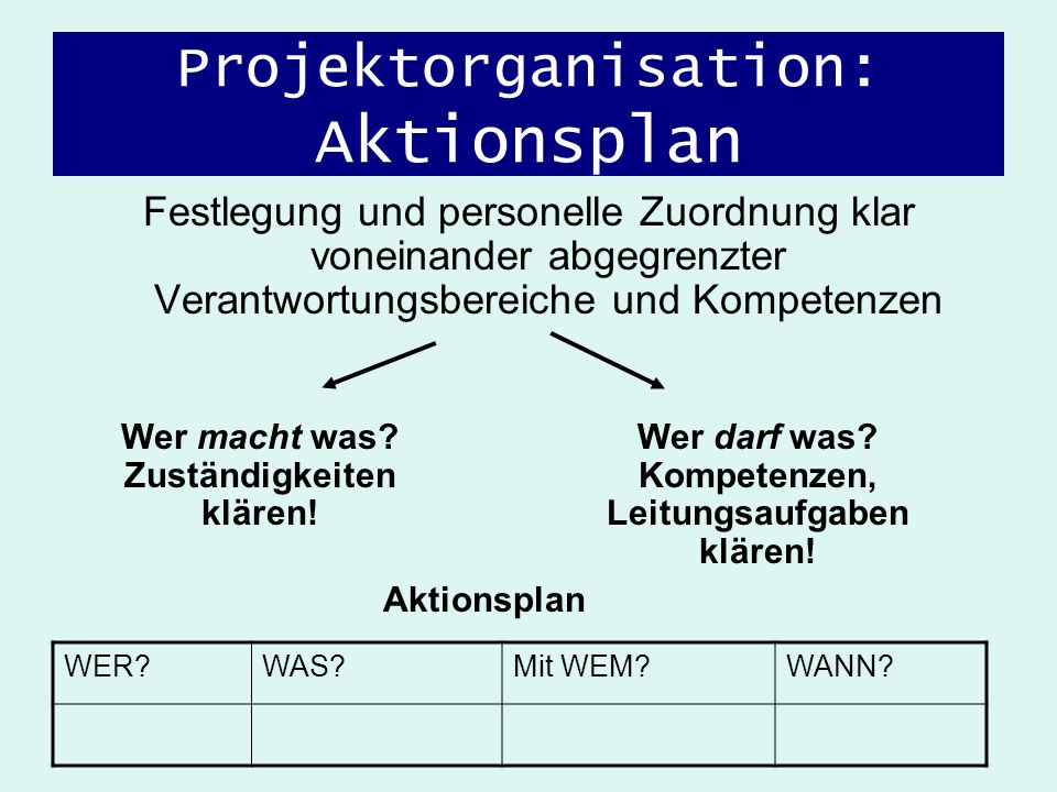 Projektorganisation: Aktionsplan
