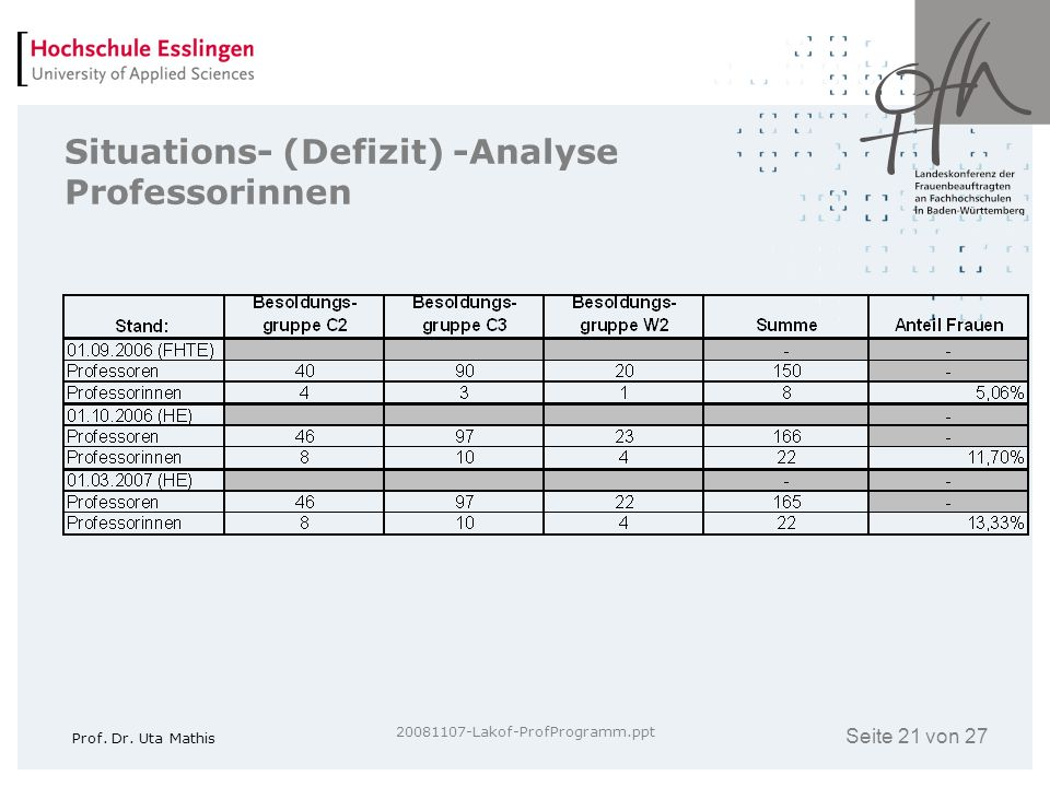 Situations- (Defizit) -Analyse Professorinnen
