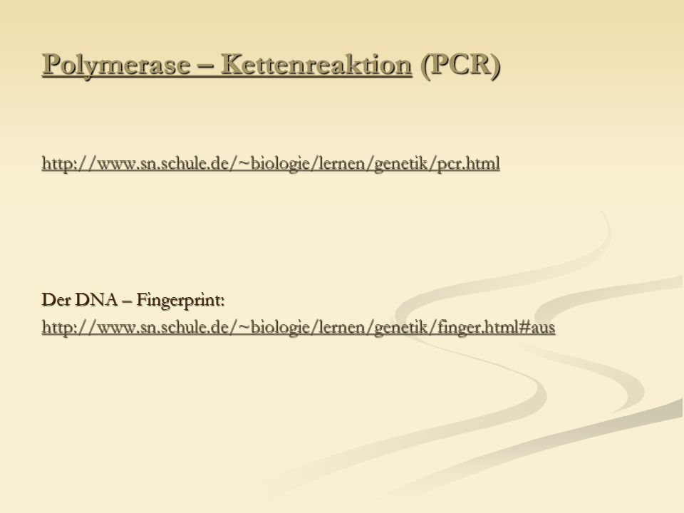 Polymerase – Kettenreaktion (PCR)