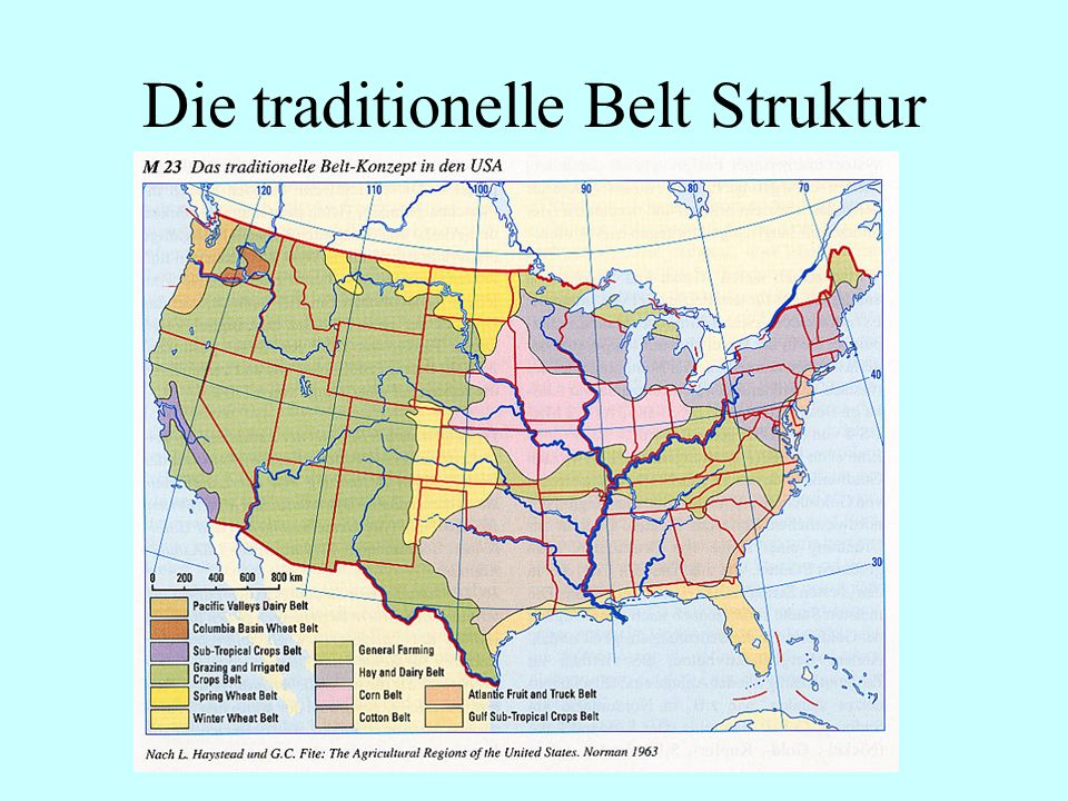 Die traditionelle Belt Struktur