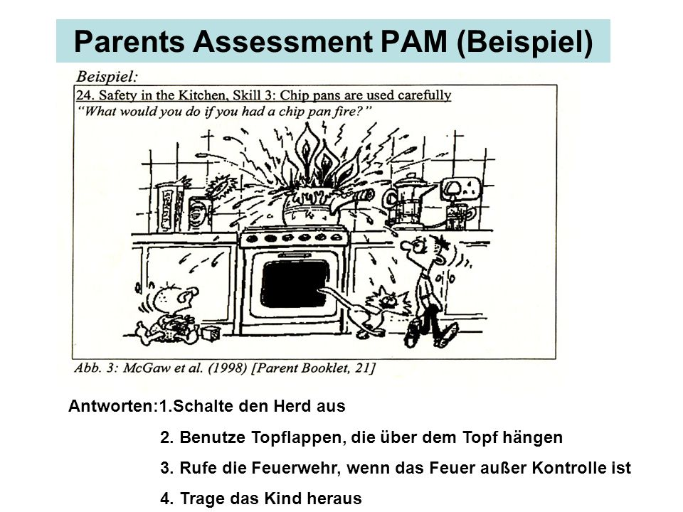 Parents Assessment PAM (Beispiel)