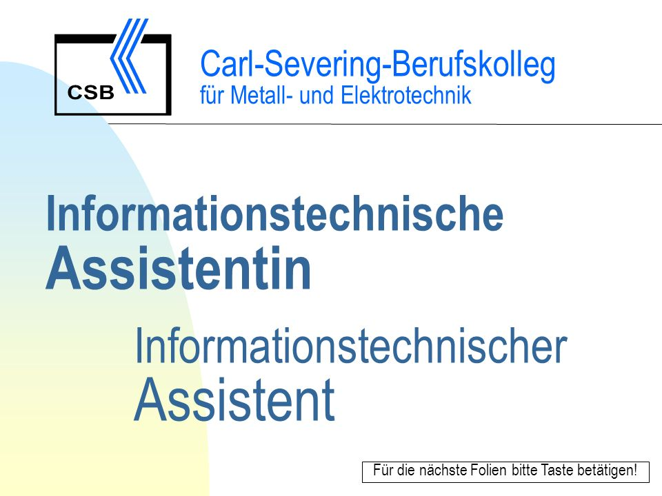 Informationstechnische Assistentin