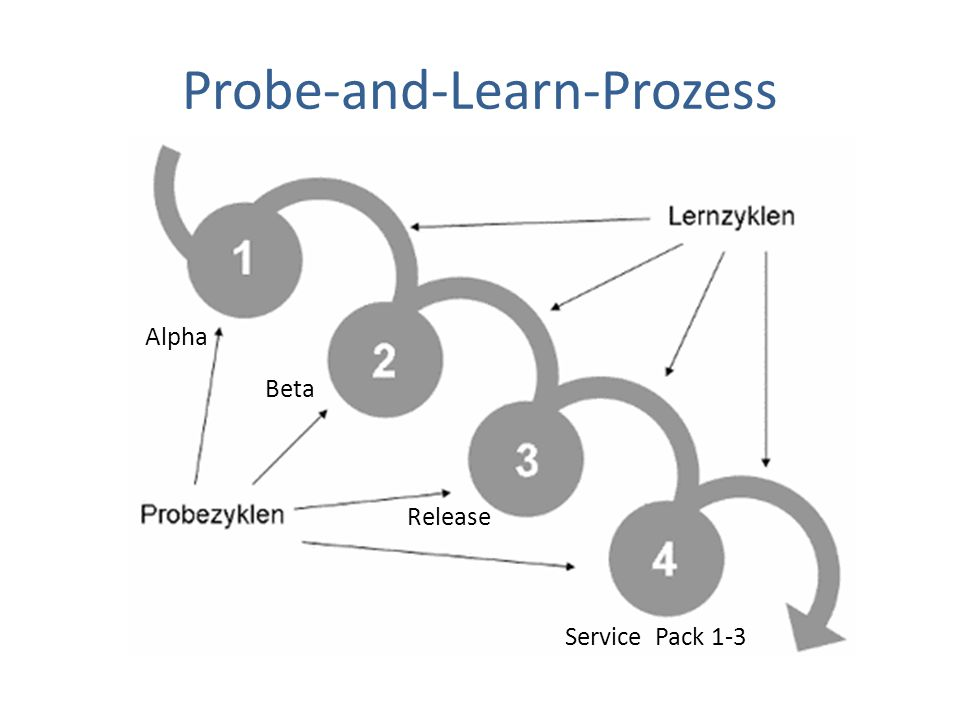 Probe-and-Learn-Prozess