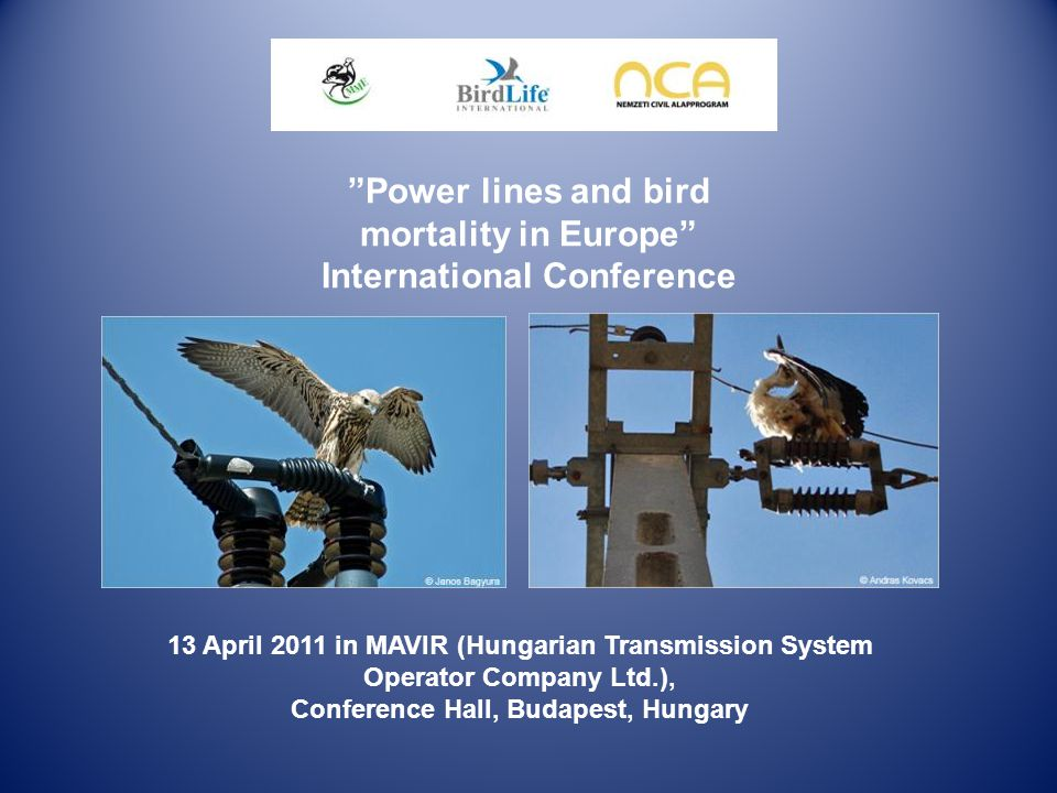 Power lines and bird mortality in Europe International Conference