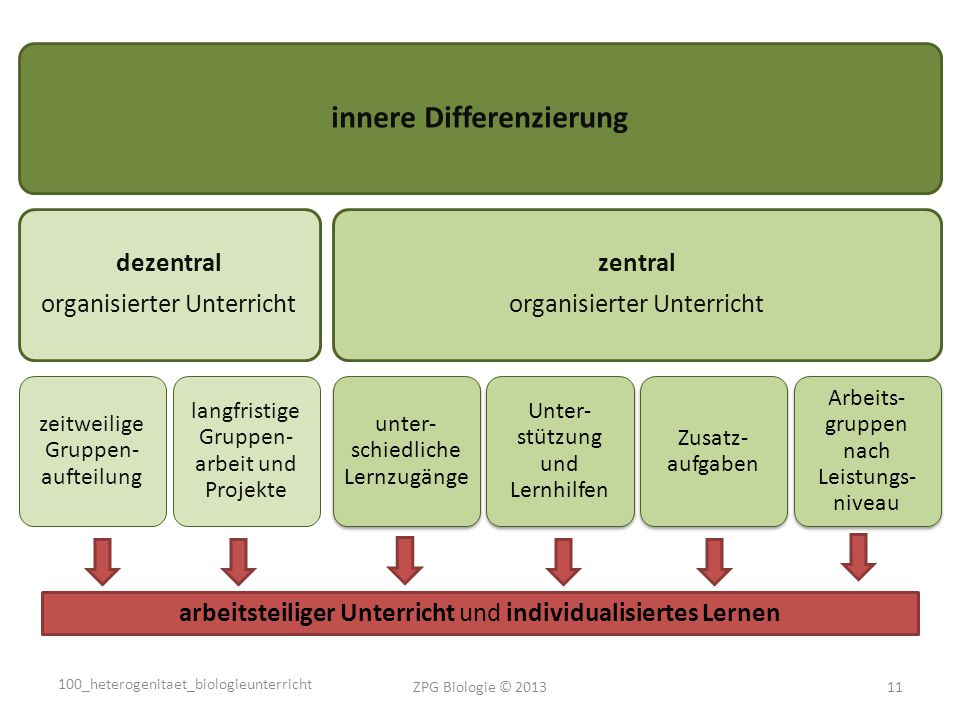 innere Differenzierung