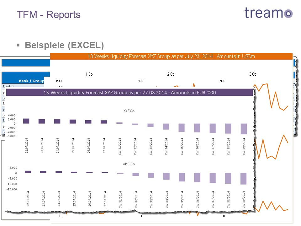 TFM - Reports Beispiele (EXCEL)