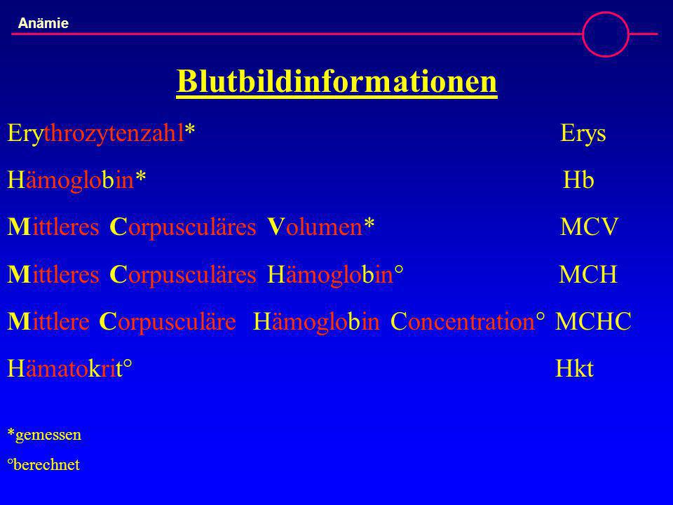 Blutbildinformationen