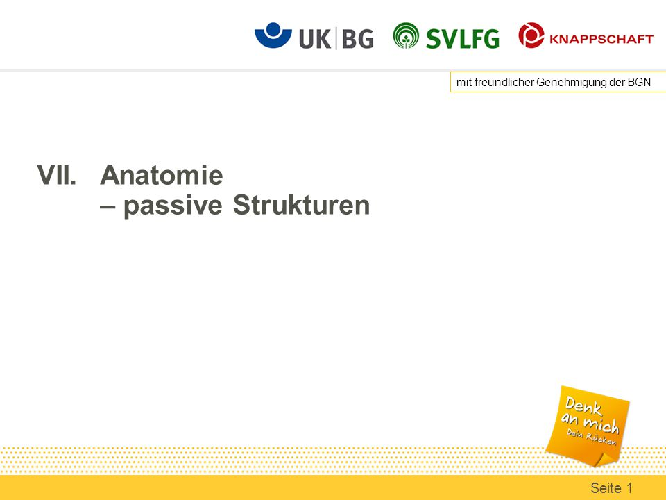 VII. Anatomie – passive Strukturen - ppt herunterladen