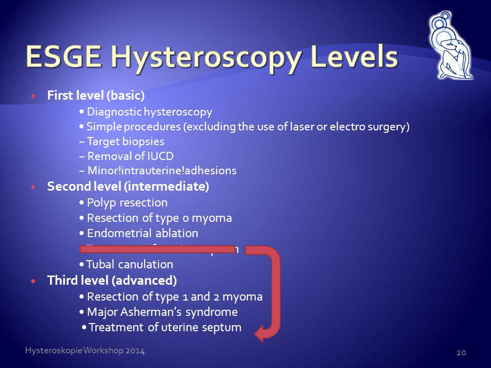 ESGE Hysteroscopy Levels