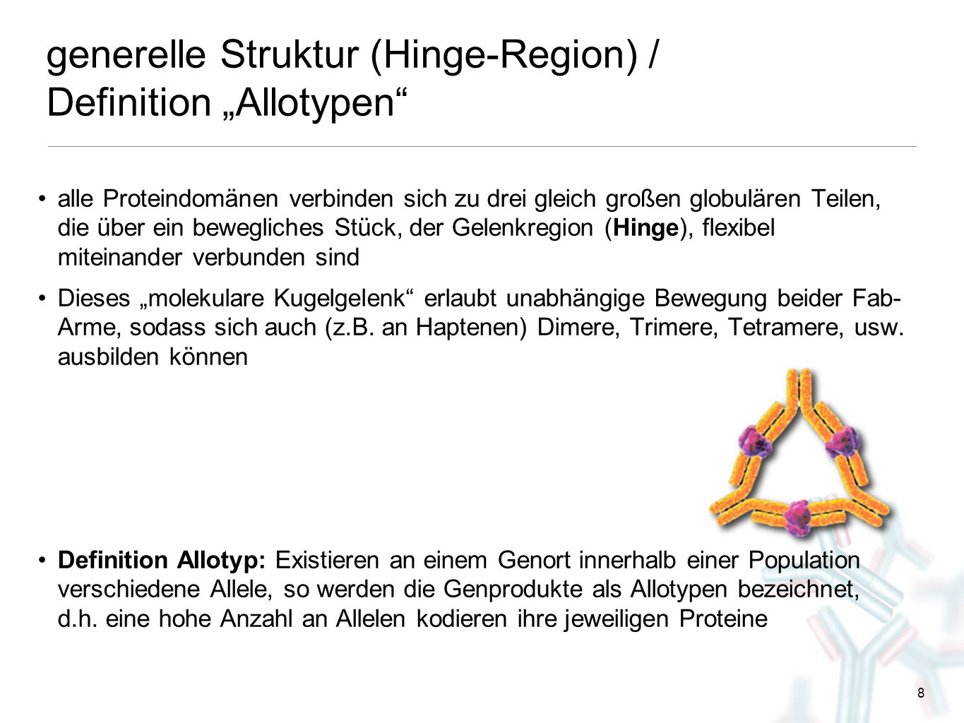 "generelle Struktur (Hinge-Region) / Definition ""Allotypen"