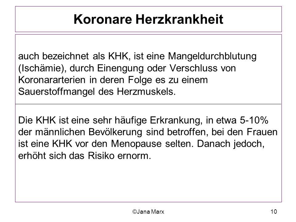 Groß Koronararterien Anatomie Bilder Ideen - Anatomie Ideen ...