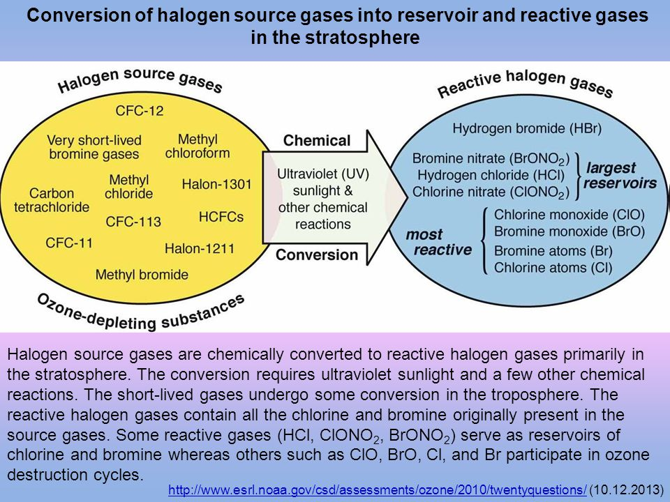 Conversion of halogen source gases into reservoir and reactive gases in the stratosphere