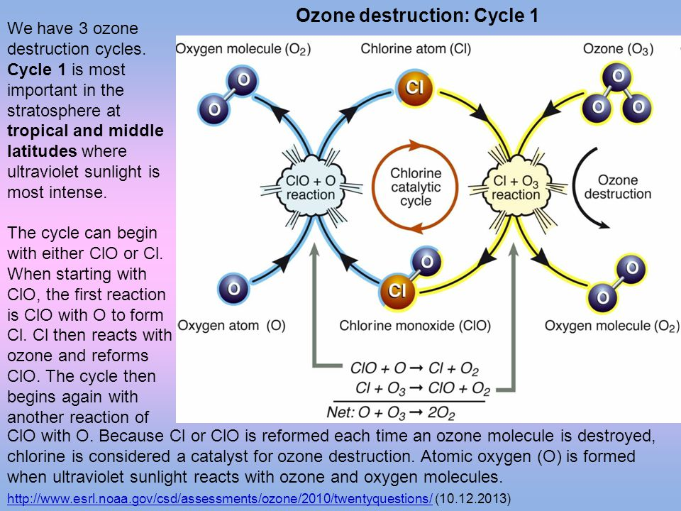 Ozone destruction: Cycle 1
