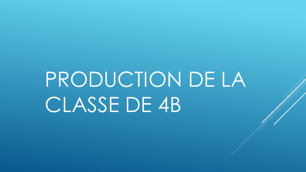 PRODUCTION DE LA CLASSE DE 4B