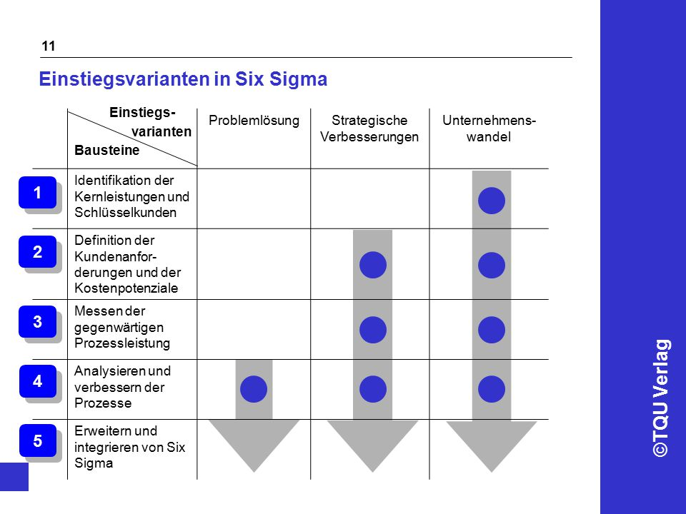 Einstiegsvarianten in Six Sigma