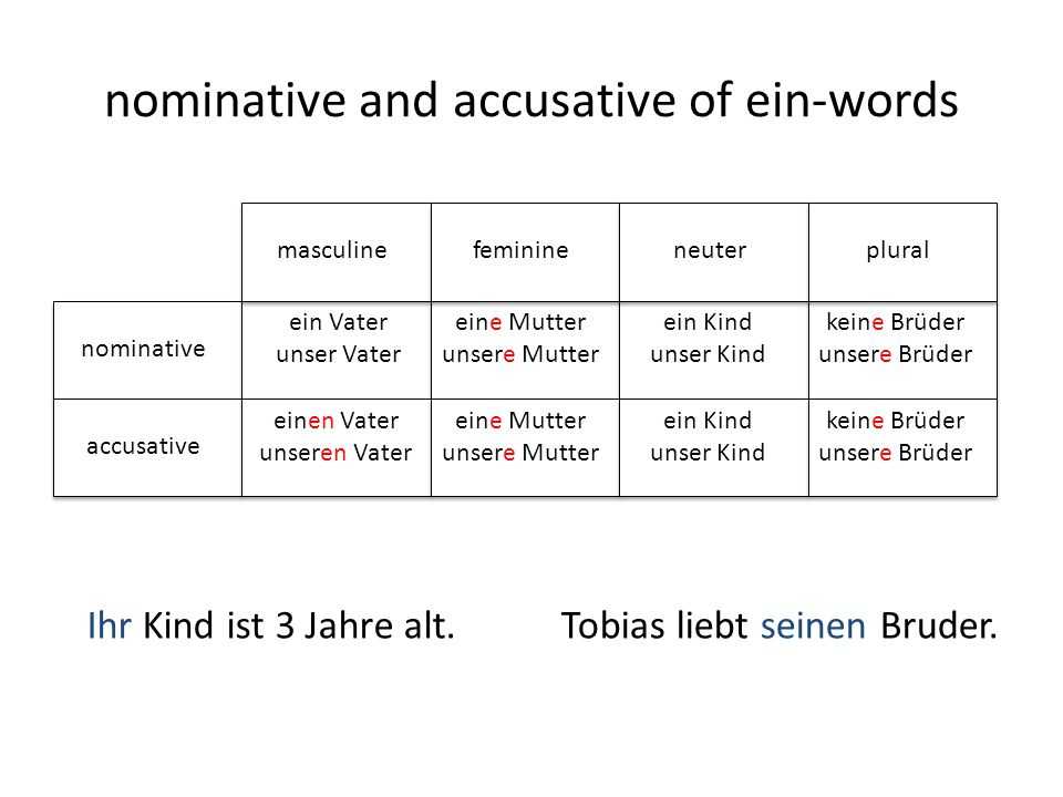 nominative and accusative of ein-words