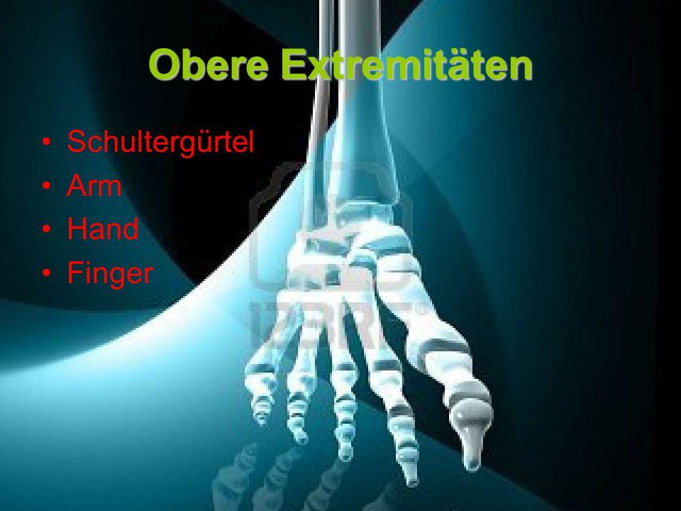 Unser Skelett und Knochenersatzmaterial - ppt video online herunterladen