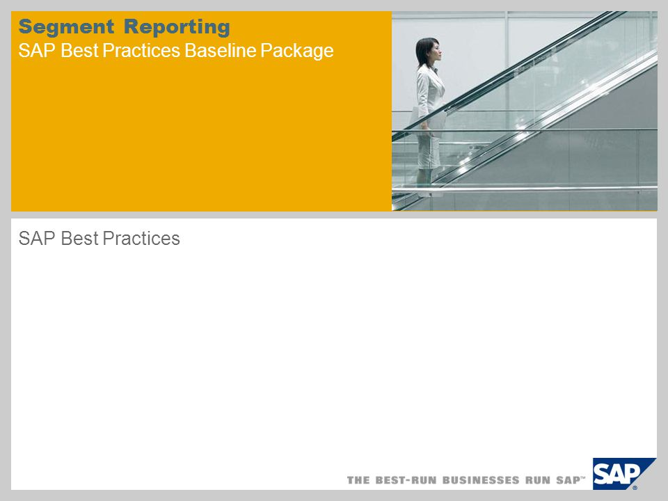 Segment Reporting SAP Best Practices Baseline Package