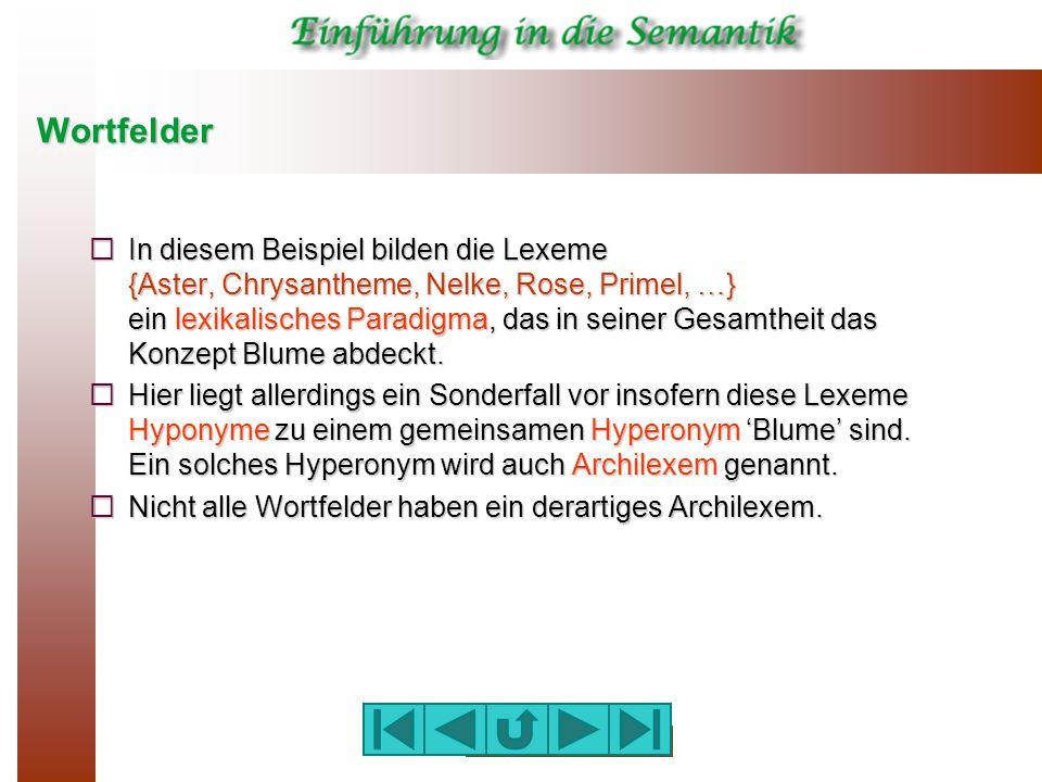 wortfelder - Wortfelder Beispiele