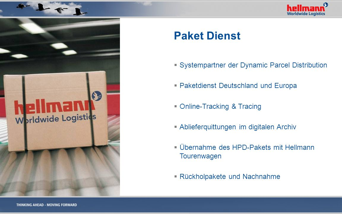 Paket Dienst Systempartner der Dynamic Parcel Distribution