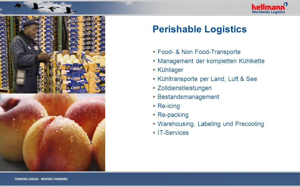 Perishable Logistics Food- & Non Food-Transporte