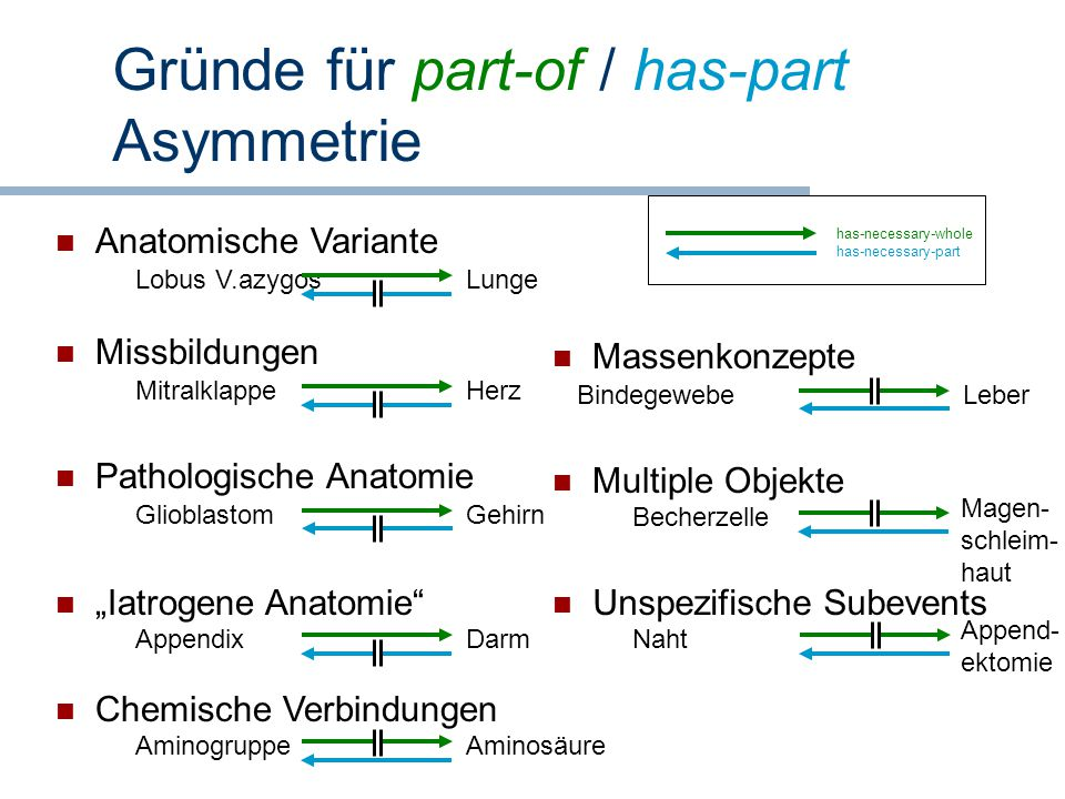 Gründe für part-of / has-part Asymmetrie
