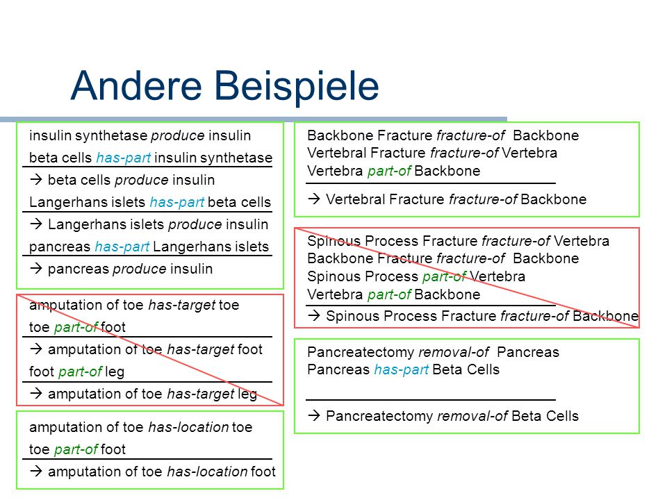 Andere Beispiele insulin synthetase produce insulin