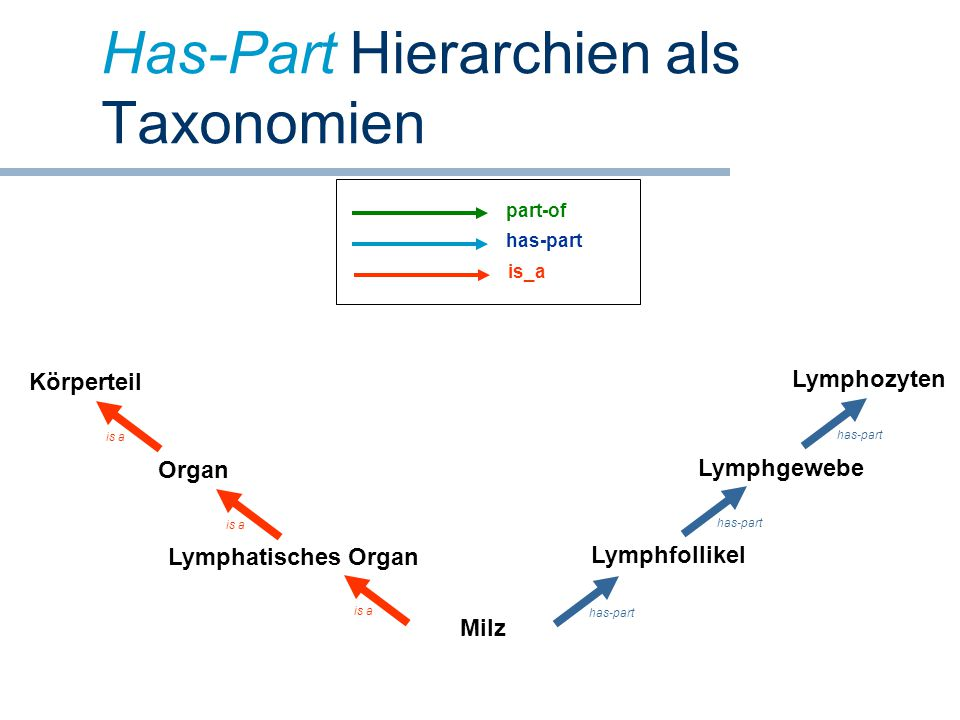 Has-Part Hierarchien als Taxonomien