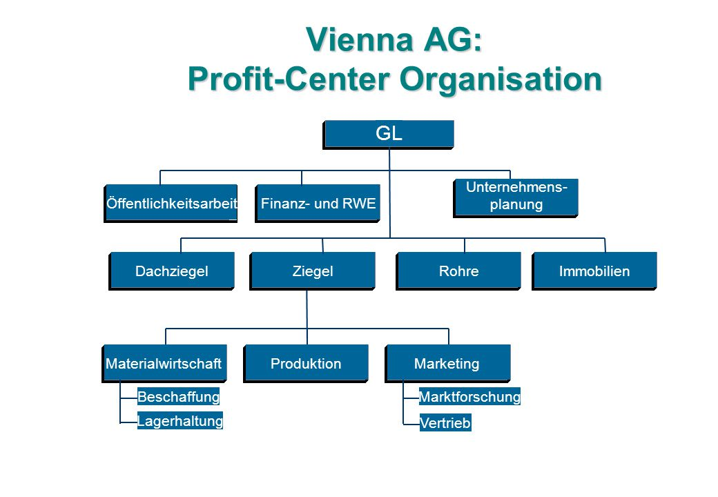 Vienna AG: Profit-Center Organisation