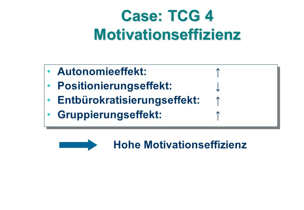 Case: TCG 4 Motivationseffizienz Hohe Motivationseffizienz