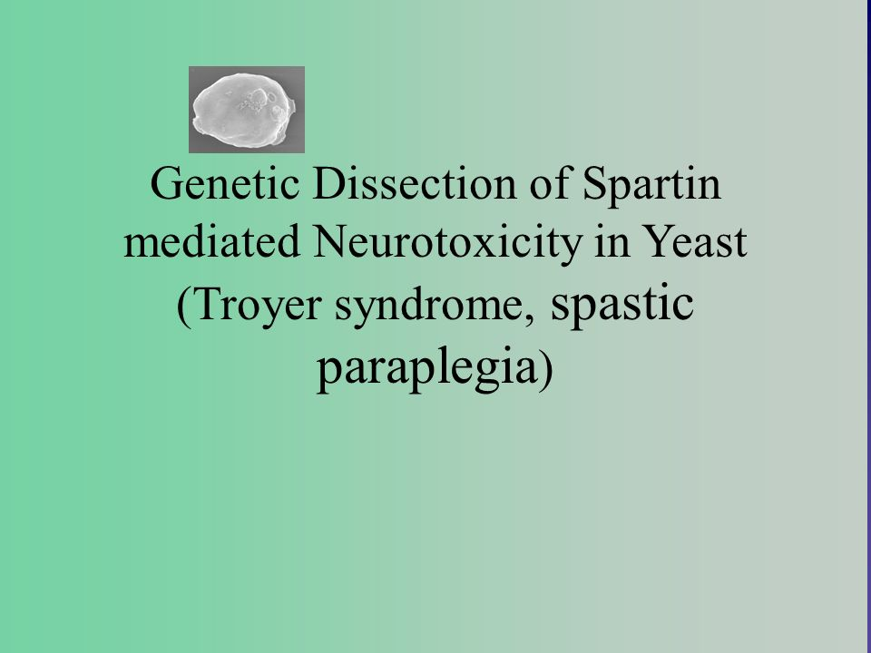 Genetic Dissection of Spartin mediated Neurotoxicity in Yeast (Troyer syndrome, spastic paraplegia)