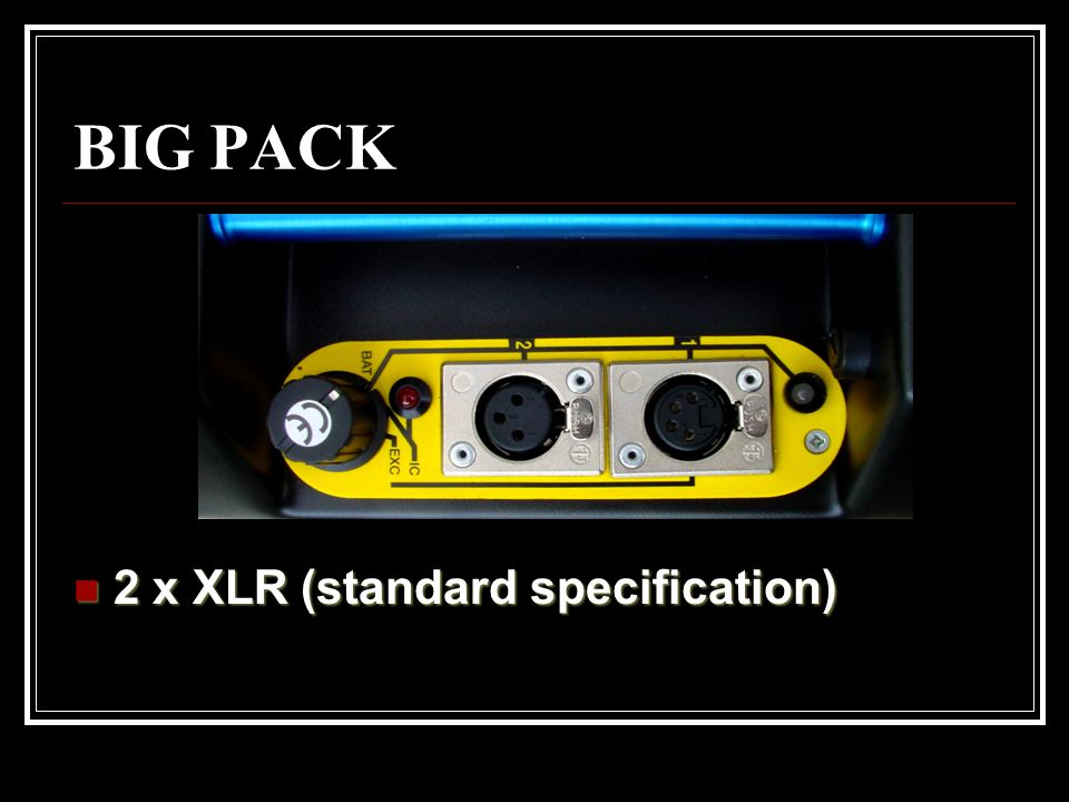 BIG PACK 2 x XLR (standard specification)