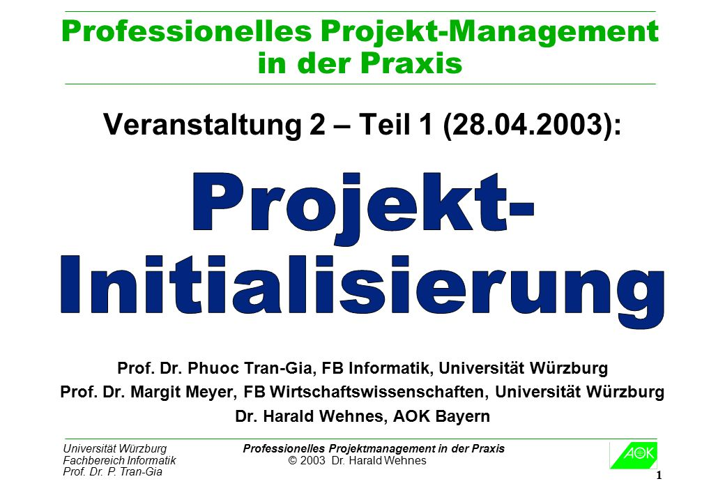 Professionelles Projekt-Management in der Praxis