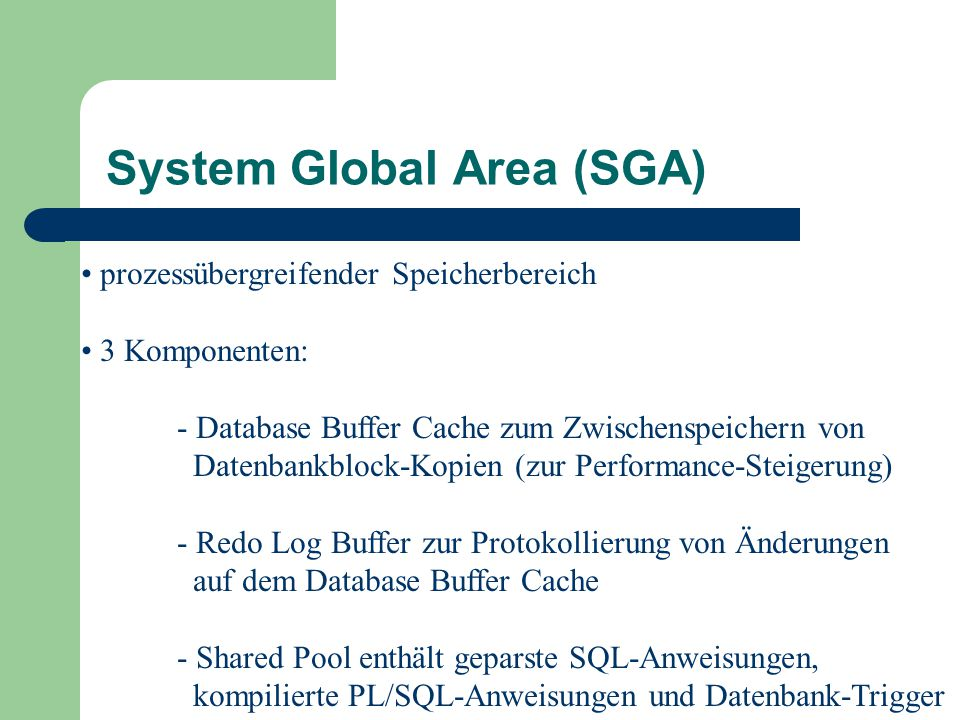 System Global Area (SGA)