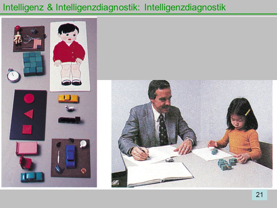 Intelligenz & Intelligenzdiagnostik: Intelligenzdiagnostik